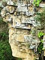Cañon del Chicamocha, Mesa de los Santos.JPG