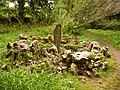 Caldey Island, a peculiar stone - geograph.org.uk - 2026004.jpg
