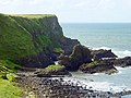 Camel's Back, Giants Causeway - geograph.org.uk - 121462.jpg
