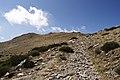 Camino - panoramio (9).jpg