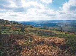 Canaan valley national wildlife refuge.jpg