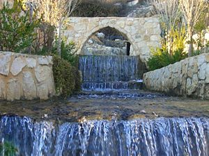 Al Rihan - One of many water sources.