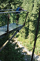 Capilano Suspension Bridge (7960610712).jpg
