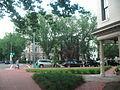 Capitol Hill, DC - garden.JPG
