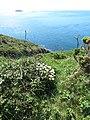 Carreg y Barcud, Trelerw, ger Tyddewi - near St David's, Pembrokeshire, Wales 01.jpg