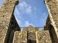 Cashel Cathedral, Rock of Cashel, Caiseal, Éire (46539635612).jpg