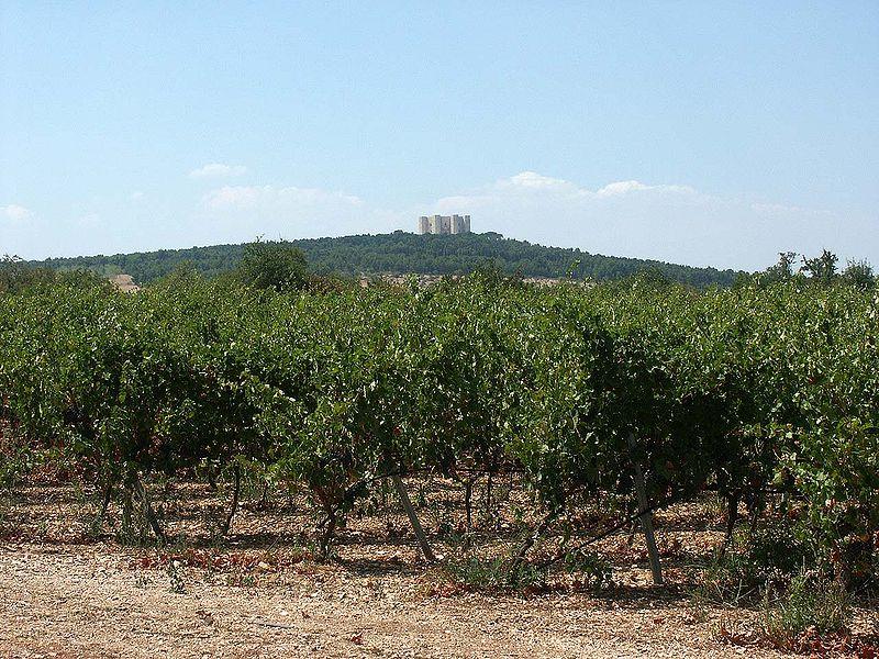 File:Castel del Monte von weitem.jpg