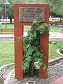 Cepa Chenin en la plaza de Luján de Cuyo, Mendoza.jpg