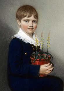 Three quarter length portrait of seated boy smiling and looking at the viewer. He has straight mid-brown hair, and wears dark clothes with a large frilly white collar. In his lap he holds a pot of flowering plants