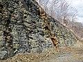 Chattanooga Shale (Upper Devonian; Burkesville West Rt. 90 roadcut, Kentucky, USA) 26 (41625901954).jpg