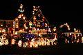 Christmas lights (1).jpg