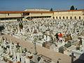 Cimitero della misericordia di viareggio 15.JPG