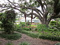 City Park NOLA 4 July 2010 Greenhouse 1.JPG