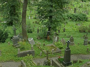 Rasos Cemetery - General view