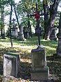 Cmentarz rzymsko-katolicki tzw. stary w Krośnie, ul. Krakowska 1 hanica103.JPG