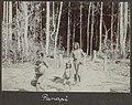 Collectie NMvWereldculturen, RV-A102-1-194, 'Panapi'. Foto- G.M. Versteeg, 1903-1904.jpg