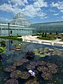 Como Park Zoo and Conservatory - 14.jpg