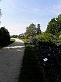 Compiègne (60) Parc du château 11.JPG