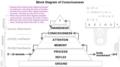 Consciousness Pyramid.png
