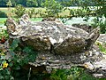 Coping stone, Hartham Lane, Corsham - geograph.org.uk - 1942404.jpg