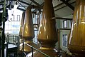Copper stills inside Jura distillery - geograph.org.uk - 996317.jpg