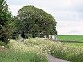 Cottage near Fardingjames - geograph.org.uk - 484341.jpg