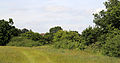 Country desire vehicle route for Woodland Trust wood Theydon Bois Essex England.JPG