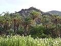 Countryside around Mugele - Baja California Sur - Mexico - 01 (23903455272).jpg