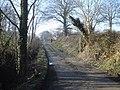 Course of the Kington and Presteigne Railway - 2 - geograph.org.uk - 903742.jpg