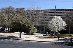 Courthouse, Ector County, Odessa, TX, 03-09-2011 (4)