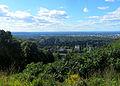 Couvert forestier Montréal.jpg