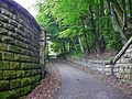 Cow Lane (2568258442).jpg