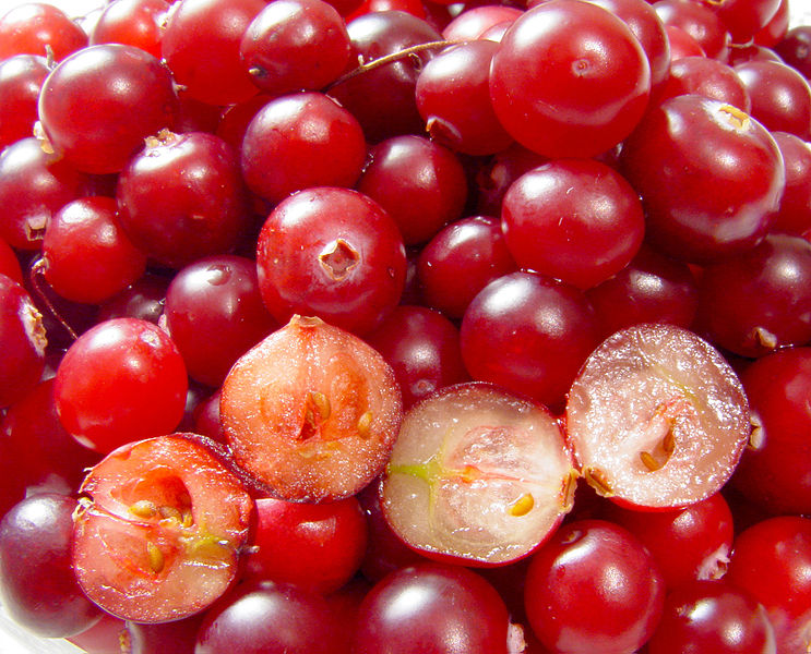 Fichier:Cranberries.jpg