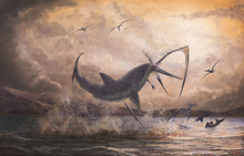 Digital painting depicting a C. mantelli shark breaching to catch a Pteranodon pterosaur