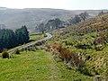Cwm Pysgotwr Fawr near Bryn Ambor, Ceredigion - geograph.org.uk - 1234567.jpg