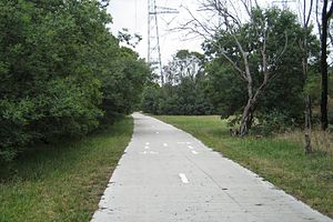 Koomba Park - The Dandenong Creek and EastLink Trails run along this section of path, looking south towards Burwood Highway.