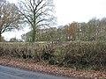 Deciduous woodland, Upleadon - geograph.org.uk - 623911.jpg