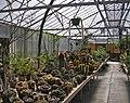 Desert Garden Conservatory interior.jpg