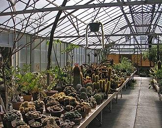 Desert Garden Conservatory - Image: Desert Garden Conservatory interior