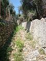 Diano Castello, vicolo con ulivi.jpg