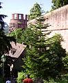 Dicker Turm und Westmauer des Heidelberger Schlosses.jpg