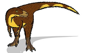 Dilong (dinosaur) - Life restoration.