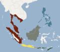 Distribution of Pteropus vampyrus.png