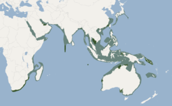 Distribution of Tursiops aduncus.png