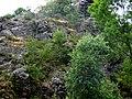 Divoká Šárka - panoramio (71).jpg
