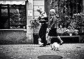 Doggy (18243194154).jpg