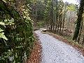 Dolenji Novaki Slovenia - Road 1.jpg