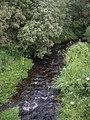 Downstream Bervie Water - geograph.org.uk - 1392022.jpg