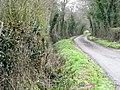 Driveway, Heddington Wick (geograph 2228700).jpg