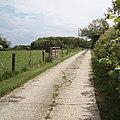 Driveway to Bungalow Farm - geograph.org.uk - 439132.jpg